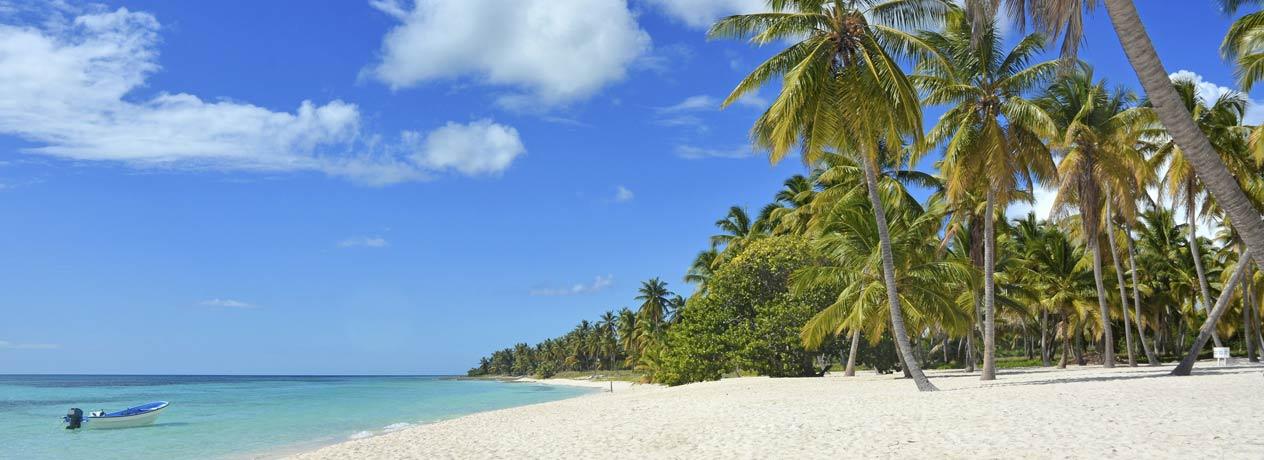 Kuba: Mein Urlaub unter Palmen